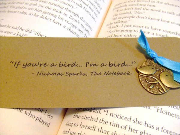 The-Notebook-Quotes-If-Youre-A-Bird-Im-A-Bird-10